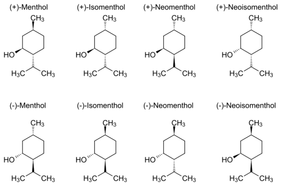 Difference Between Camphor and Menthol
