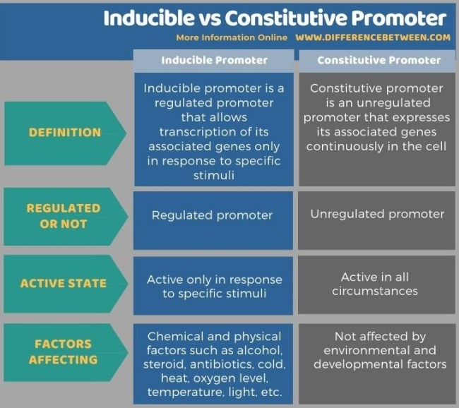 Difference Between Inducible and Constitutive Promoter in Tabular Form