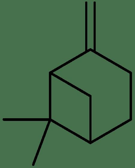 Key Difference - Alpha vs Beta Pinene