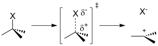 Difference Between Protonation and Ionization