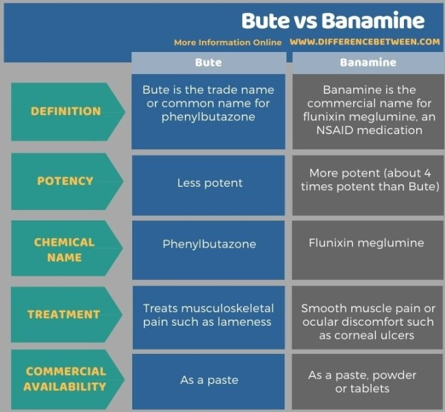 Difference Between Bute and Banamine in Tabular Form