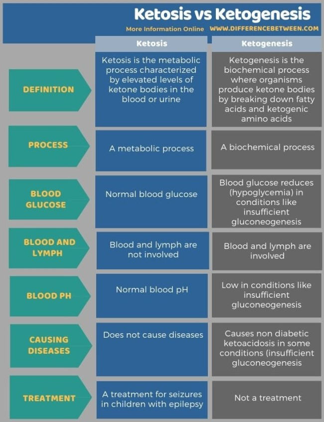 Difference Between Ketosis and Ketogenesis in Tabular Form