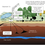 Difference Between Carbon Capture and Storage and Carbon Sequestration