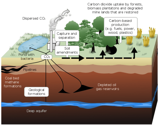 Carbon Capture and Storage vs Carbon Sequestration?