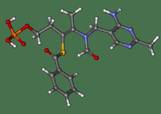 Benfotiamine vs Thiamine