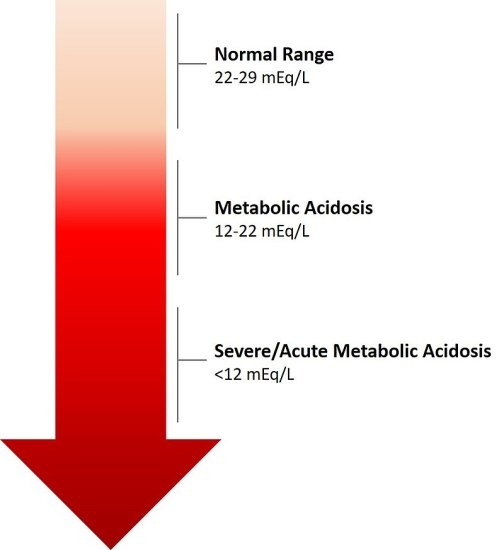 metabolic acidosis and metabolic alkalosis - side by side comparison