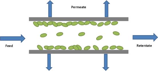 Microfiltration vs Ultrafiltration vs Nanofiltration in Tabular Form