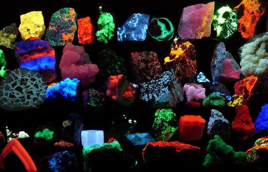 Bioluminescence vs Fluorescence in Tabular Form