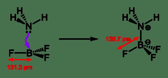 Protic Acid vs Lewis Acid in Tabular Form