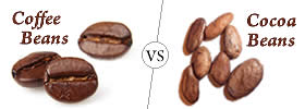 Image Result For What Is The Difference Between A Cappuccino And A Frappuccino