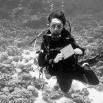 Une plongeuse montre un tableau blanc sous l'eau