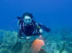 Hélène en plongée en Jamaïque