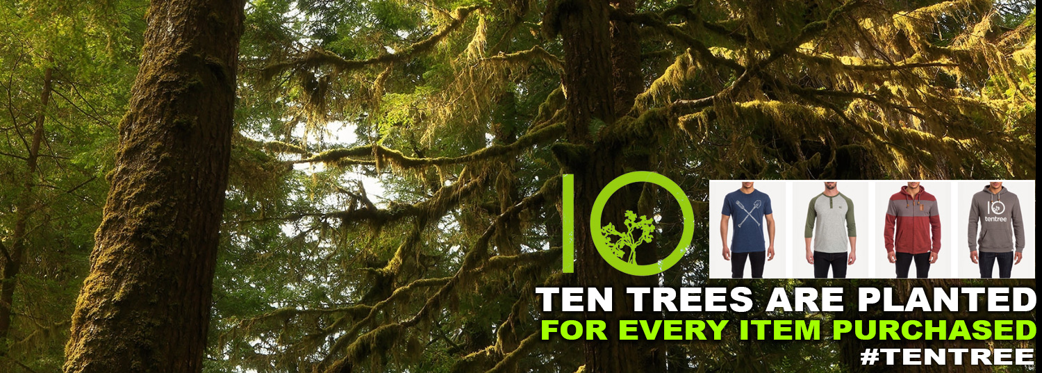 Image result for tentree