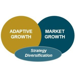 Strategy Diversification