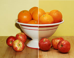 Can you tell which image was taken using a bounce flash?