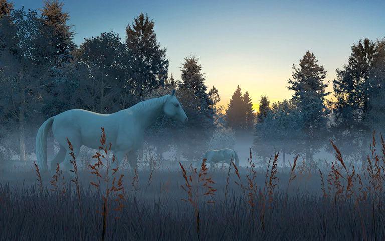 Horses In The Fall Wallpaper Fog Horses 3d Screensaver Download Animated 3d Screensaver