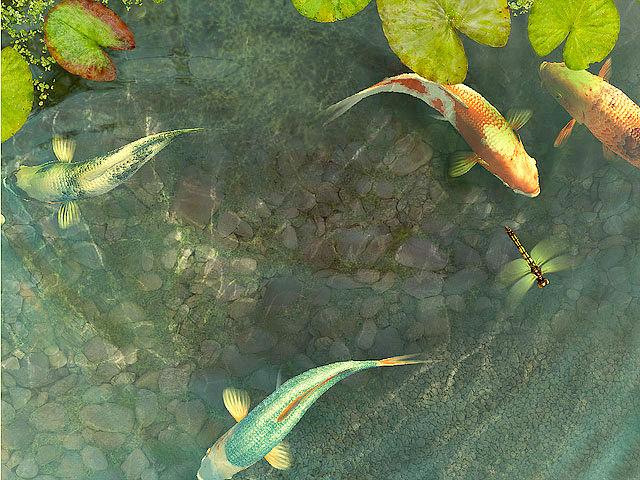 Live Fall Wallpaper For Pc Koi Fish 3d Screensaver Download Animated 3d Screensaver