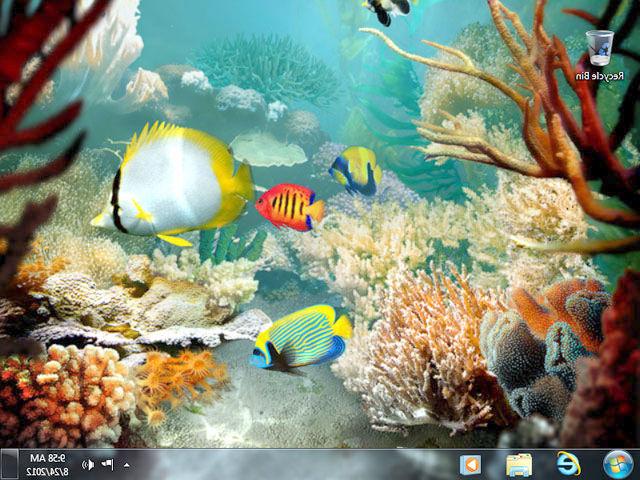 Mac Os Wallpaper Hd Download Tropical Fish 3d Screensaver Download Animated 3d