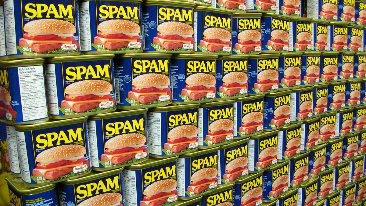 Kleine Weltgeschichte des Spam und der Junk-Mail