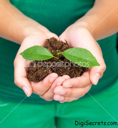 Young-woman-holding-plant-in-her-hand