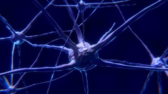 neural network AI