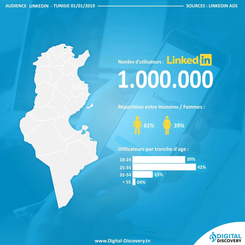 chiffres reseaux sociaux tunisie 2019 linkedin