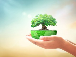 Go,Green,Home,Service,Concept:,Human,Hands,Holding,Earth,Globe