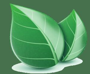 green-web-hosting-hero