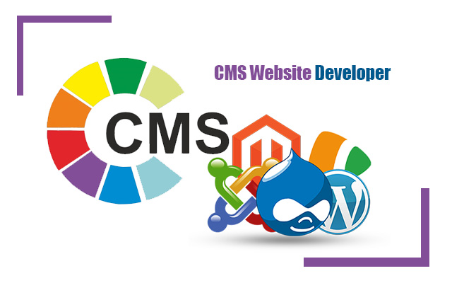CMS-Website-Developer-in-Lagos-Nigeria-Digitalbes-Limited