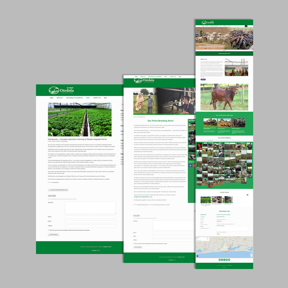 Website Design and Development for Otedolafarms