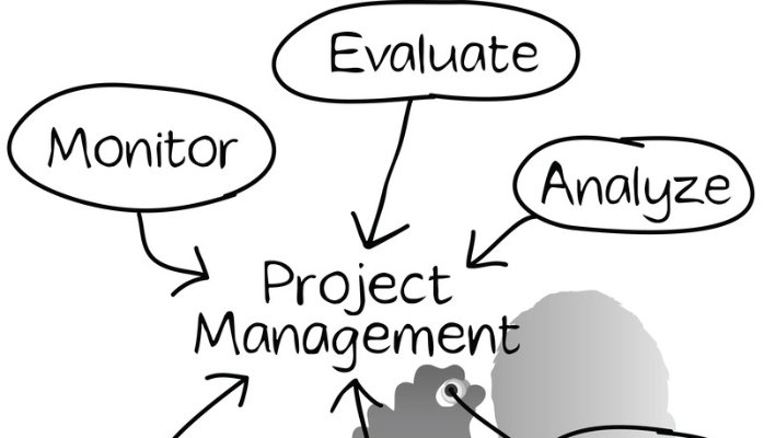 A Role Of Project Management For The Companies And Its