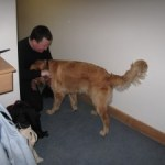 Day 8 – Training with Ike my new guide dog