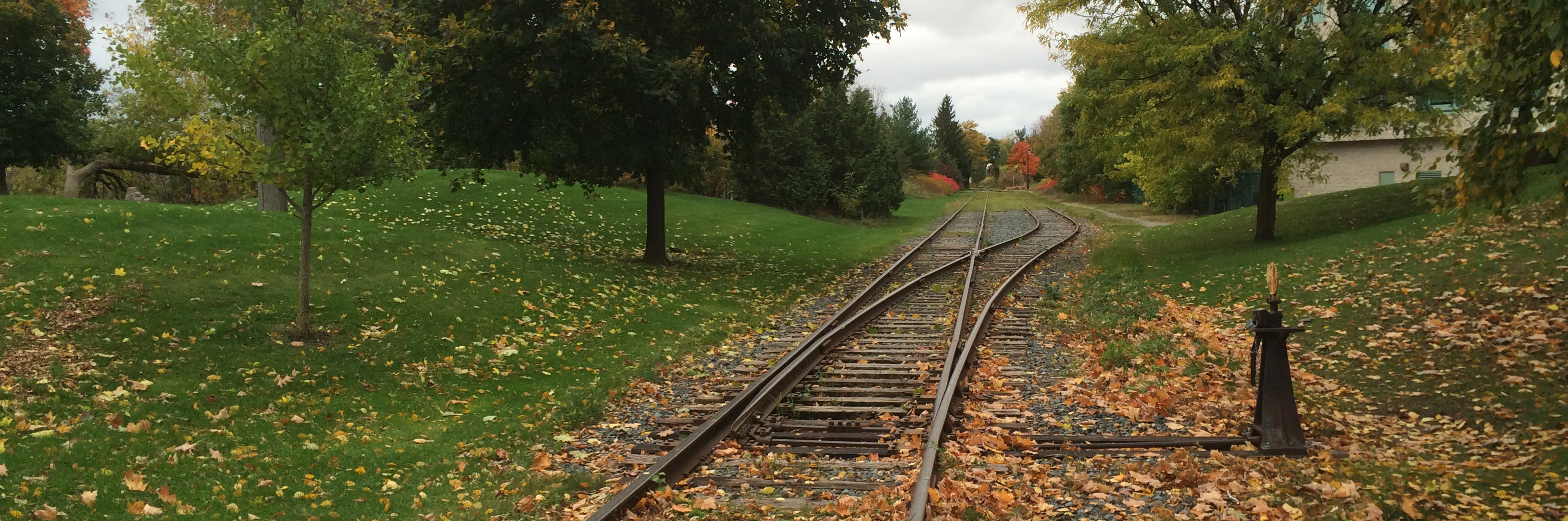 A picture of a cycle path. It's built on an old rail line in Canada.