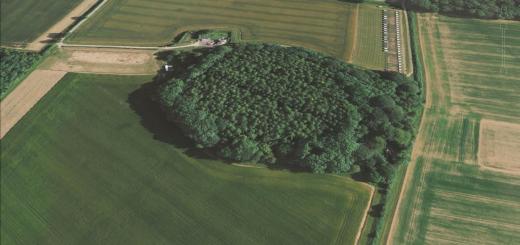 Caesar's Camp Hill-fort, Dorset.
