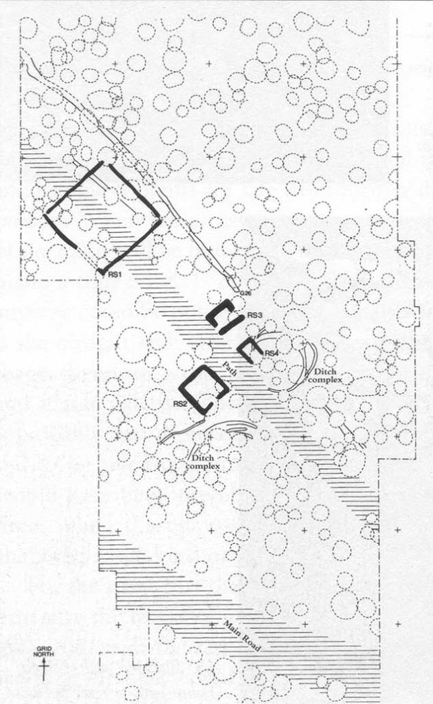 Image 01 - General plan of the central area showing the four 'shrines'.