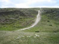 Mount Caburn Hillfort, Chalk Path.