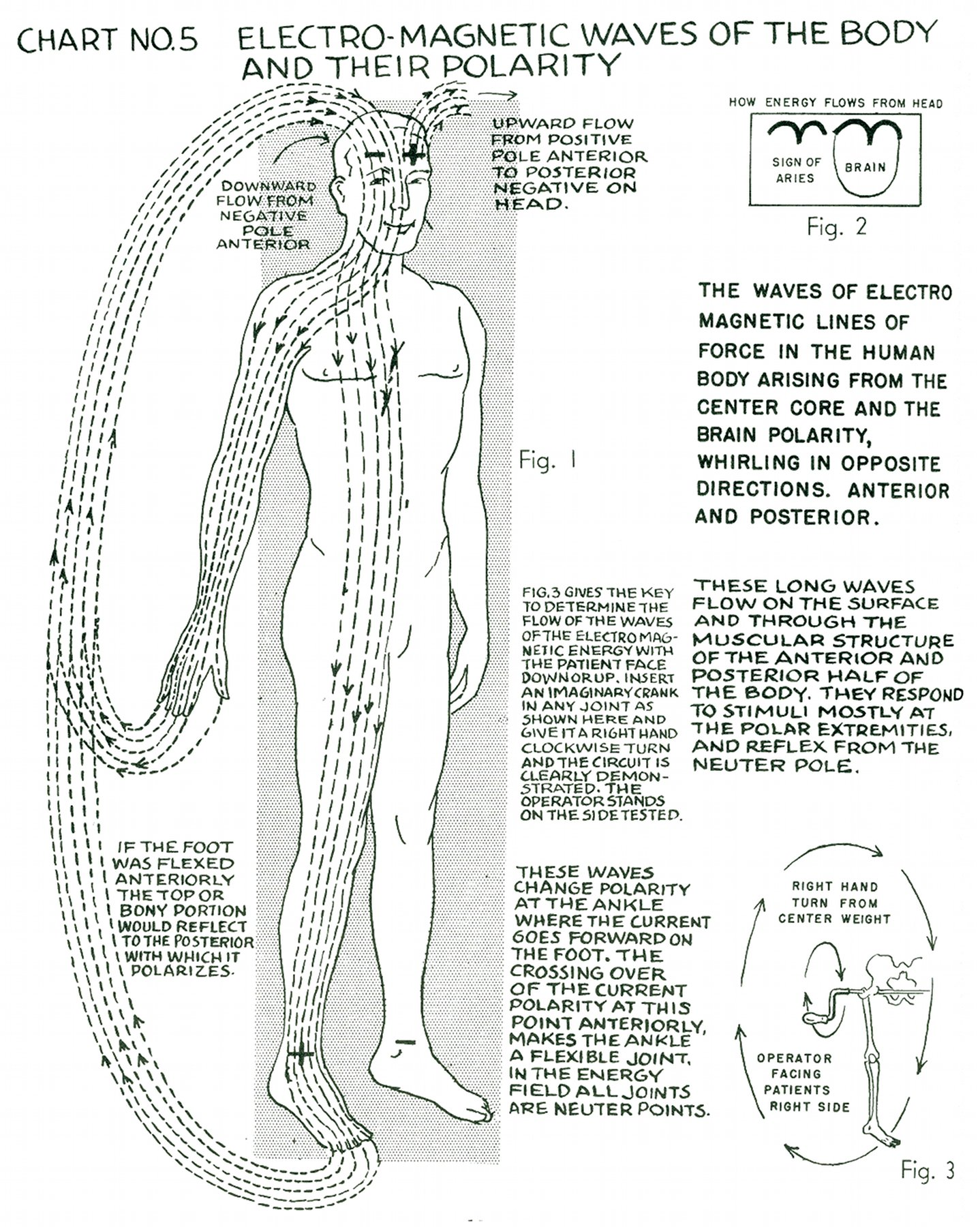 Polarity Therapy Volume 1 Book 2 Chart 05