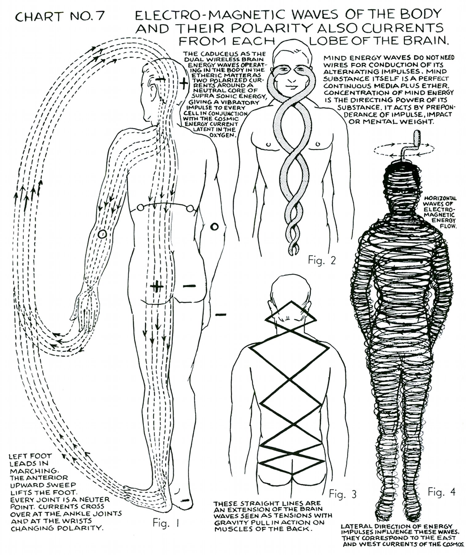 Polarity Therapy Volume 1 Book 2 Chart 07