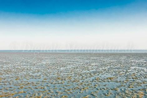 Nordseebilder-15
