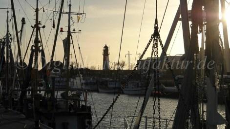 Nordseebilder-28