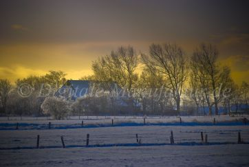 Winterlandschaft-39