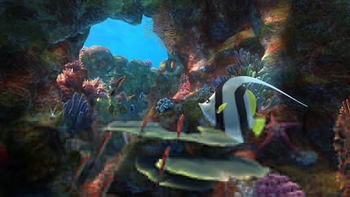 Der farbenprächtige Ozean in all seiner Schönheit - und im Kino in 3D!