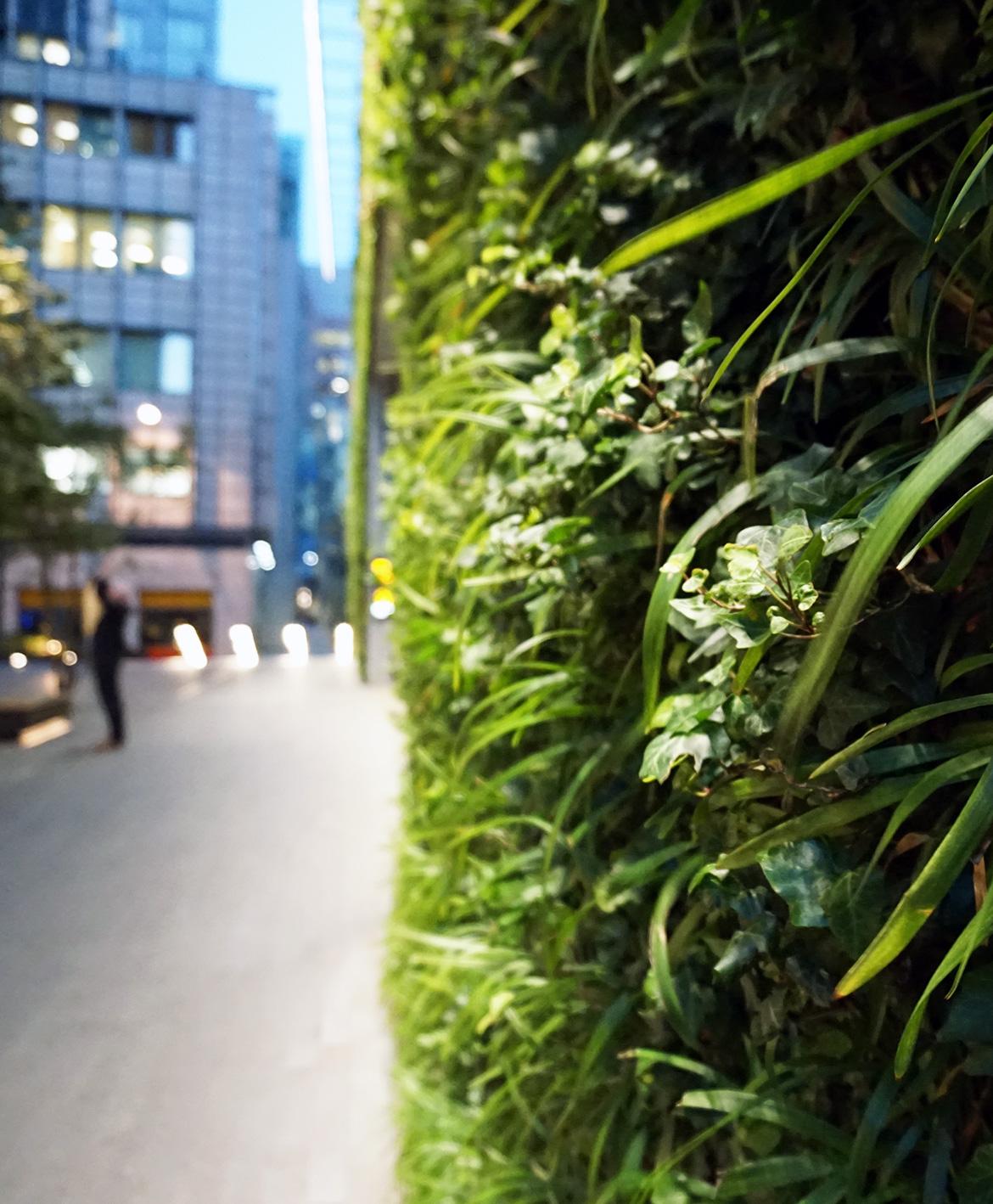 hidden-jungle-v15