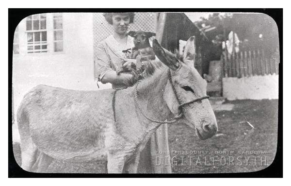 'Rev. Walser Allen's Pets'