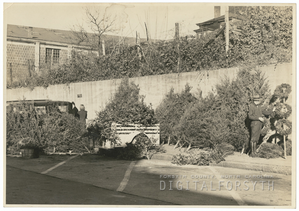 Selling Christmas trees near the City Market on N. Cherry Street, 1939.