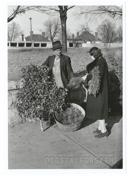 Selling holly trees, Christmas trees, and moss on the city streets, 1939.