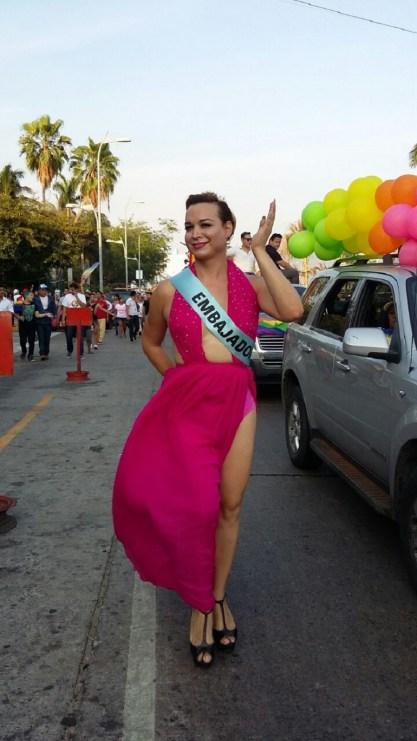 bandera lebisco-gay 1