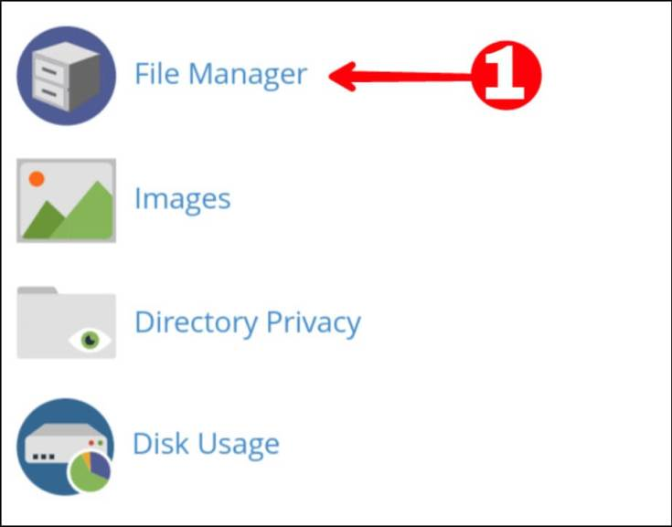 Click File Manager Option