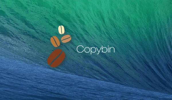 Copybin-1020-500