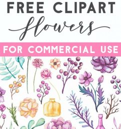 500 free flower clipart images [ 768 x 1214 Pixel ]